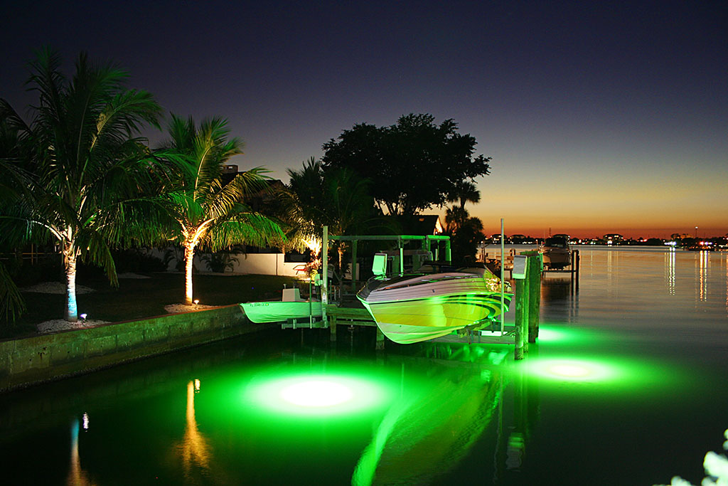DuncanSeawall_0002_Underwater Fish Lights