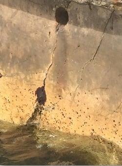 Cracked Seawall Panel
